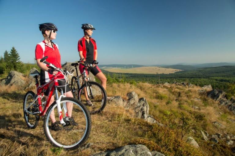 Бізнес на організації велотурів