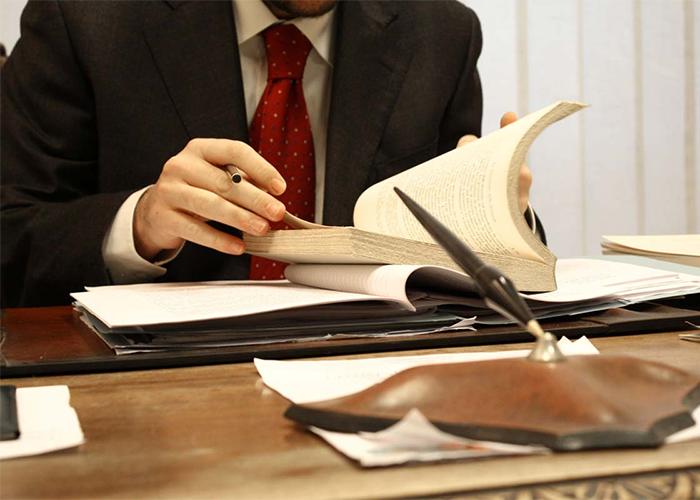 Услуги, предоставляемые адвокатской компанией«LEX»